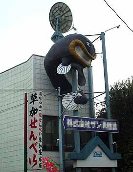 50316catfish
